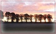 10th Oct 2012 - sunrise frost
