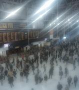 11th Oct 2012 - rush hour again