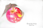 11th Oct 2012 - After Apple-Picking - Get Pushed Challenge Minimalism multiple exposures photo