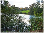 15th Oct 2012 - Across The Lake