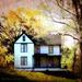 House on the HIll by cindymc