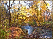 16th Oct 2012 - The Bushkill in Fall