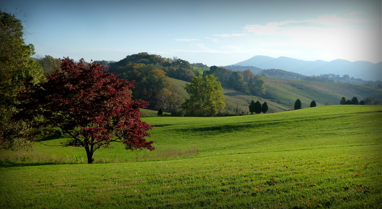 Rolling Hills by calm