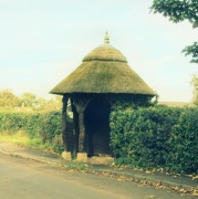 18th Oct 2012 - Thatched Bus Shelter