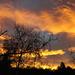 October Sky by dmdfday