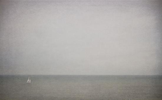 Grey by humphreyhippo