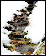 22nd Oct 2012 - First Snow