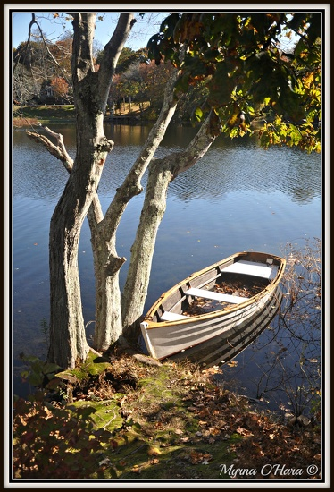 Relaxed row boat on pond by sailingmusic