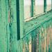 Boatshed Green by kwind