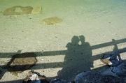23rd Jul 2012 - shadows