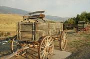 25th Jul 2012 - wagon train