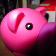 28th Oct 2012 - In-focus/Pink - Either-or/Rainbow October