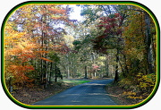 12th Oct 2012 - Country drive