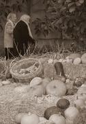 28th Oct 2012 - Autumn II