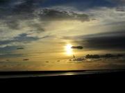 26th Oct 2012 - Freedom