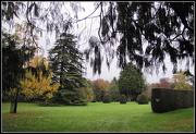 4th Nov 2012 - Autumn at Madingley Hall