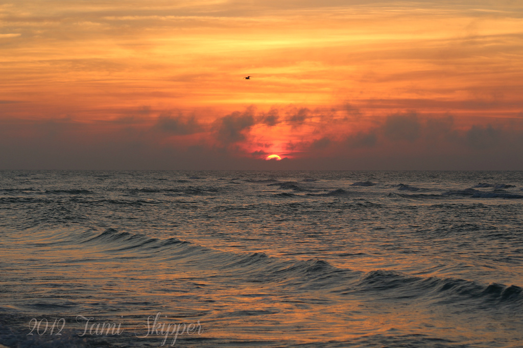 Sunrise over the Gulf of Mexico by tskipper