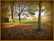5th Nov 2012 - My neighbourhood!