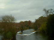 6th Nov 2012 - The Horse shoe weir on the river Teme at Ludlow.