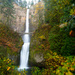 Multnomah Falls by vickisfotos