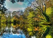 10th Nov 2012 - autumn at the lake