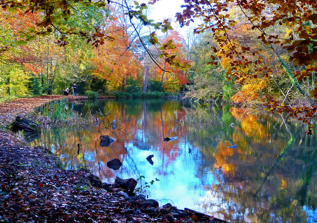 autumn afternoon at the lake by jantan