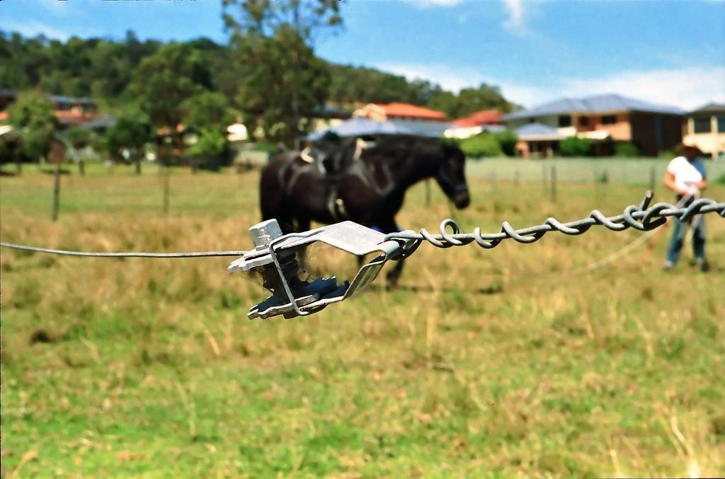 Fence strainer by peterdegraaff