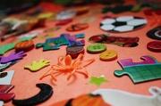 14th Nov 2012 - I Spy Spider!