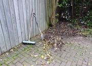 16th Nov 2012 - A bit of a tidy up