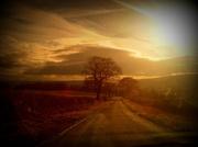 17th Nov 2012 - Country Road
