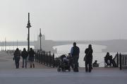18th Nov 2012 - Foggy walk