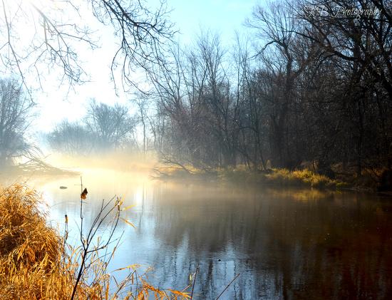 Little fog by myhrhelper