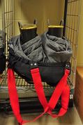 23rd Nov 2012 - Fireman's Suspenders