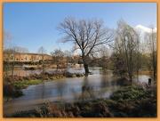 25th Nov 2012 - Flooded!