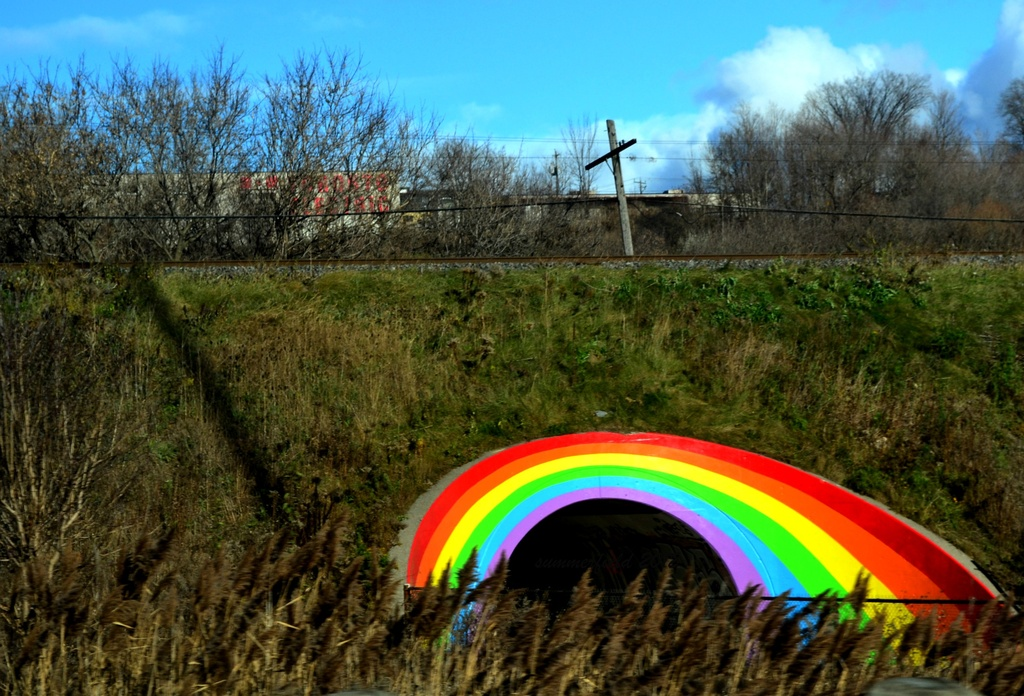 every time i see a rainbow by summerfield