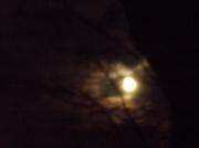 27th Nov 2012 - A full moon tonight..