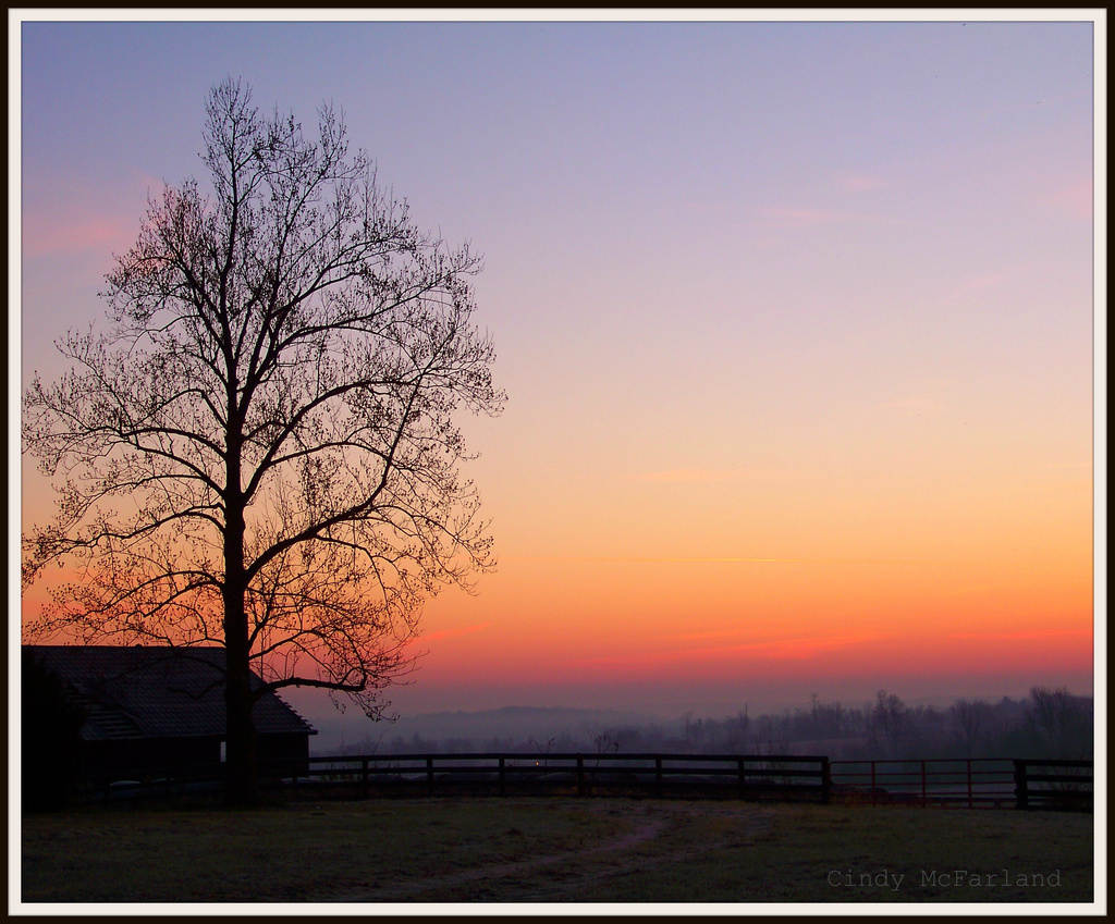 Before Sun-up by cindymc