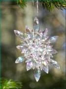 30th Nov 2012 - Christmas Tree Snowflake