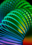 1st Dec 2012 - Slinky