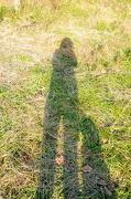 2nd Dec 2012 - Self Portrait with Border Collie