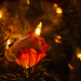 Floral Decorations by cdonohoue