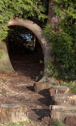 4th Dec 2012 - The pathway