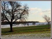 5th Dec 2012 - Wood Lane