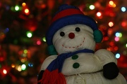 5th Dec 2012 - Frosty is back