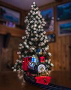 5th Dec 2012 - Christmas Train