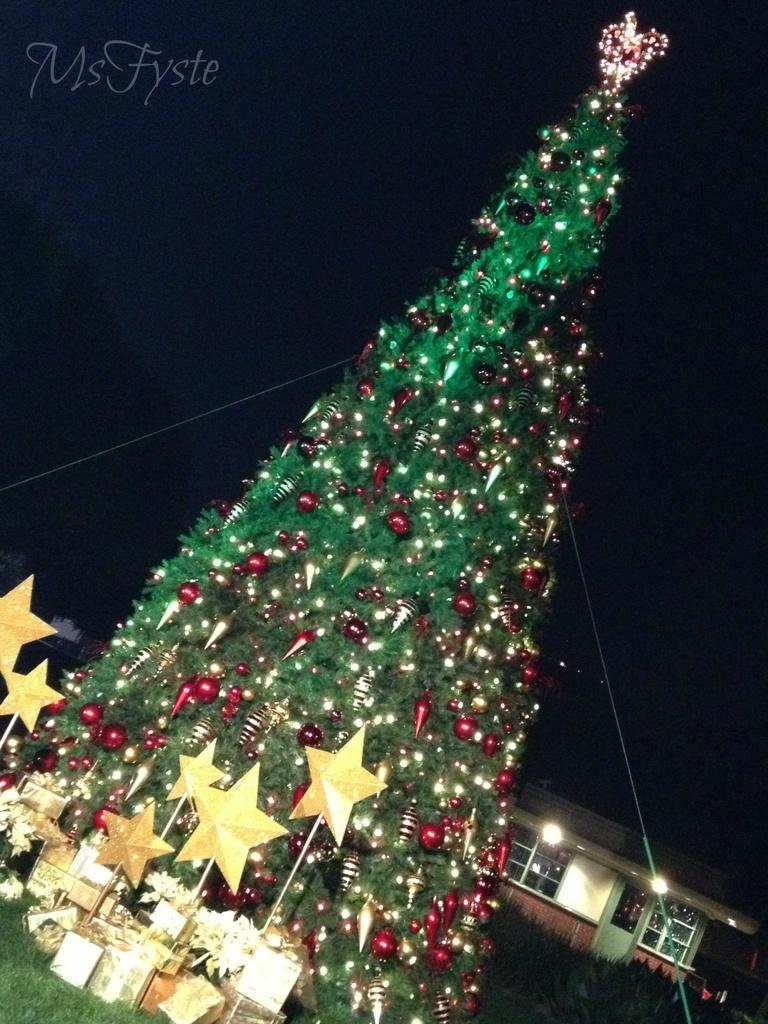 Light Up the Season by msfyste