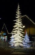 6th Dec 2012 - Sparkly Tree