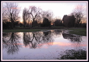 8th Dec 2012 - Reflection in the floods