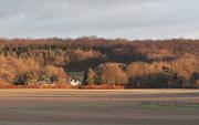 9th Dec 2012 - Winter sunlight