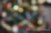 11th Nov 2012 - Merry Christmas
